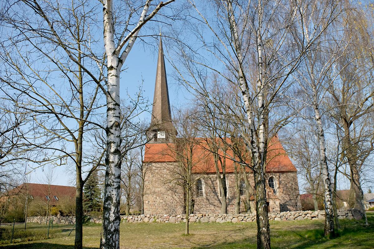 Zerrenthin - Mit Blick auf die Dorfkirche durch die Birkenbäume hindurch