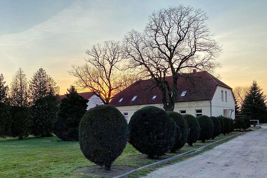 Brietzig - Kleine Buchsbaumalle